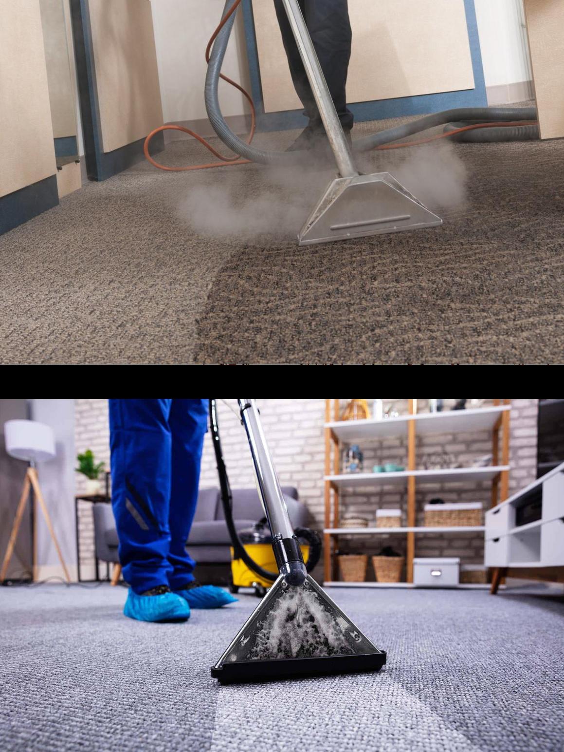 Carpet Sanitizing Services